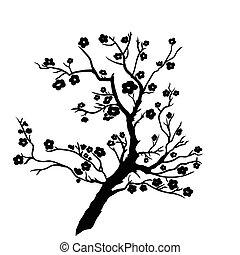 twig plum mei blossoms. Vector illustration. Black ...