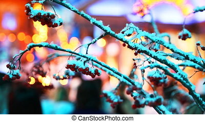 twigs mountain ash sprinkled snow and festive colored lights of street behind them