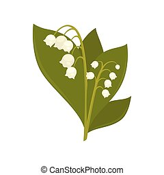 Twigs of close up lily of the valley isolated picture on...