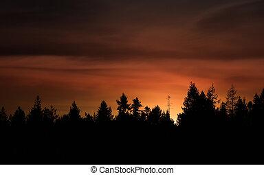 twilight fire - twilight moon hidden just behind a tree line