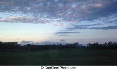 Twilight scenery of Queensland Aus - Twilight scenery from...