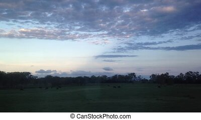 Twilight scenery of Queensland Aus - Twilight scenery from...