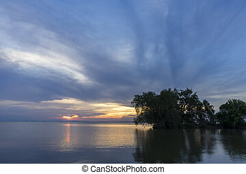 Twilight sky and silhouette tree