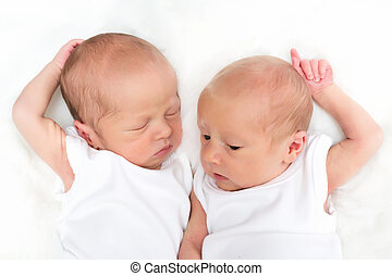 Twin brothers - Newborn twin brothers of 11 days old, one ...