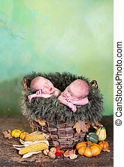 Twins in a basket