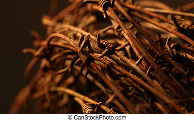 Twisted barb wire - Close up of a twisted barb wire