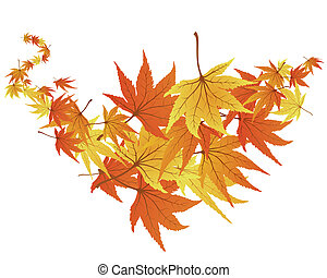 twisted leaves - Twisted row of autumn maples leaves. Vector...
