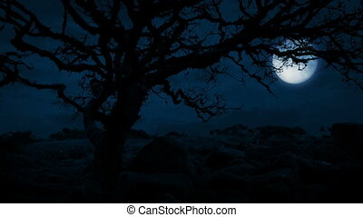 Twisted Old Tree On Hilltop With Moon Behind - Gnarled old...