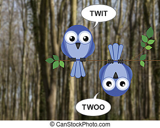 Twit Twoo - Two owls calling to each other perched on a tree...