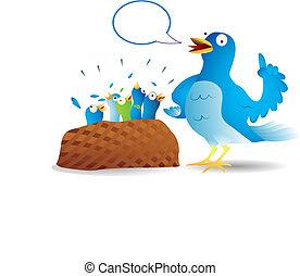Twitter bird talking - Very talkative twitter bird giving a ...