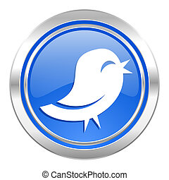 twitter icon, blue button