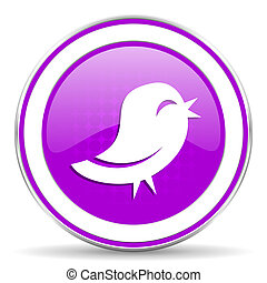 twitter violet icon