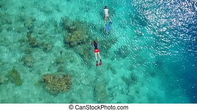two 2 people young couple snorkeling over coral reef with...