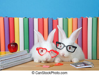 Two adorable white albino baby bunny rabbits wearing geeky glasses