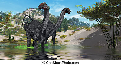 Apatasaurus - Two Apatasaurus dinosaur wade through a lush...