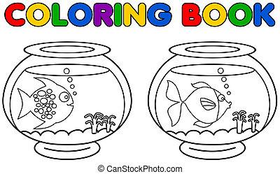 two aquarium with fish coloring