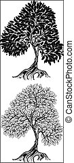 two artistically drawn , outline tree on a white background.