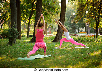 Two athletic women doing yoga exercises on the grass in a park