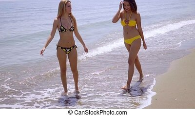 Two attractive women strolling along a beach in their...