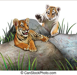 Two baby tigers playing on the rocks. Isolated Illustration...