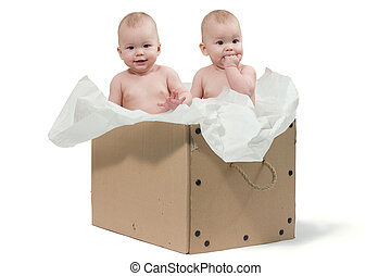 Twin babies in the big box. Isolated on white background