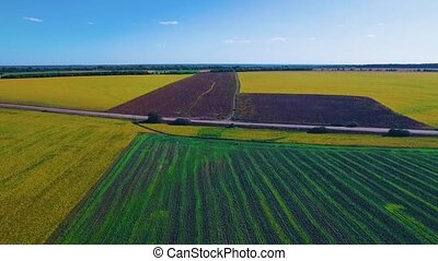 Two beautiful fields - Aerial view of two large fields...