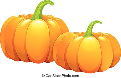 Two beautiful pumpkins without leaves