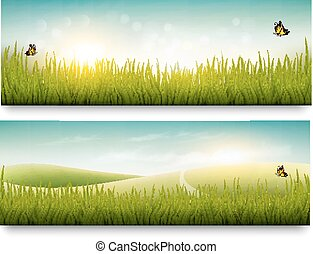 Two beautiful summer meadow landscape banners with butterflies. Vector.