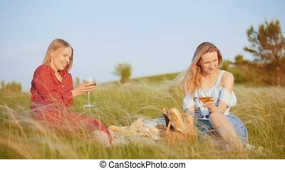 Two beautiful women having a picnic on the field - drinking wine