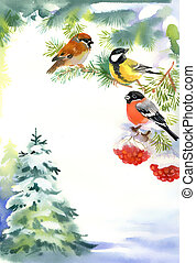 Two birds and bullfinch on the snowy branch with berries of Viburnum and Christmas tree in the snow on background