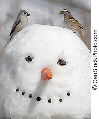 Two Birds On A Snowman