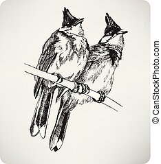 Two birds on the branch, hand drawing, vector illustration
