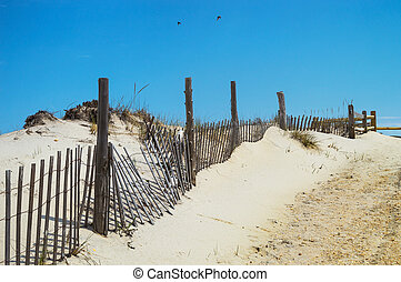 Two Birds - A fence along the sand dunes in Surf City along...