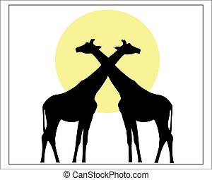 Two black silhouette of the giraffe