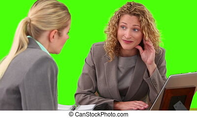 Two blond businesswomen having a meeting at a desk