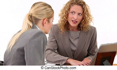 Two blond businesswomen having a meeting