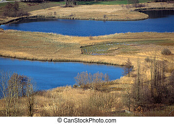 Two blue lakes and reedbeds in France