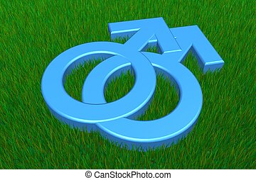 Two Blue Male Symbols on Grass