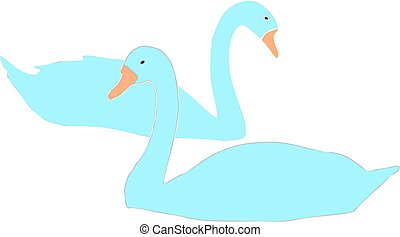 two blue swans vector on white background