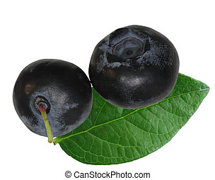 Two blueberries