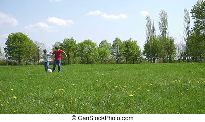 Two boys hit the ball on green playfield with dandelions,...
