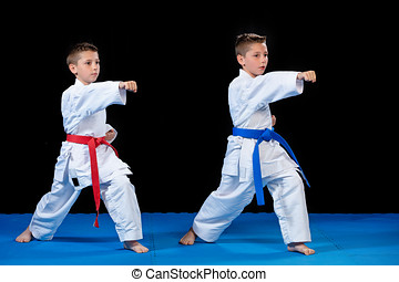 two boys training karate kata exercises at test...
