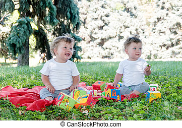 two boys twins sitting on a red blanket with toys in nature