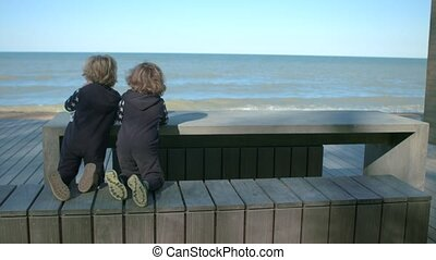 Two brothers are sitting at a table by the sea