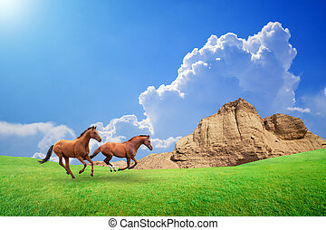Two brown horses run through green meadow