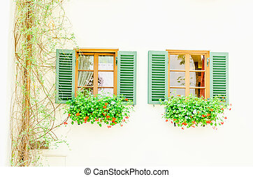 Two brown windows with green shutters and flowers