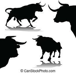 two buls - bulls vector silhouette illustration