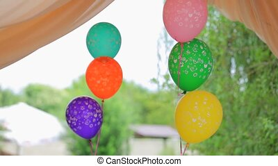 Two Bunches Of Colorful Balloons Swaying On Wind At Arbor