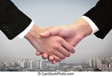 Two business man shaking hand