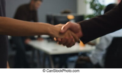 Two business partners handshaking after successful project.